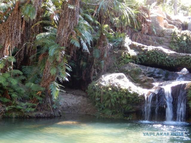 Моя поездка на Мадагаскар