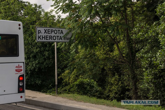 Поездка в Сочи.