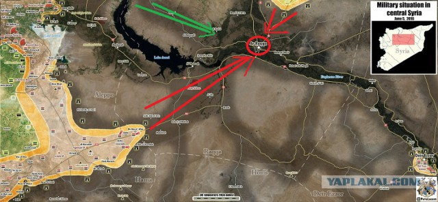Глазами очевидца: Сирийская армия наступает на Ракку