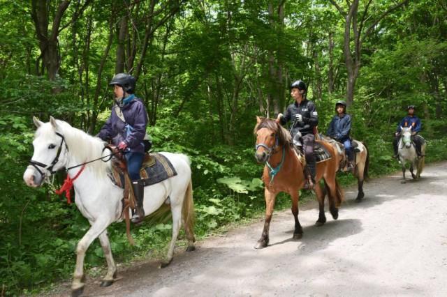 Более пяти суток в Японии искали семилетнего мальчика, которого родители оставили в лесу