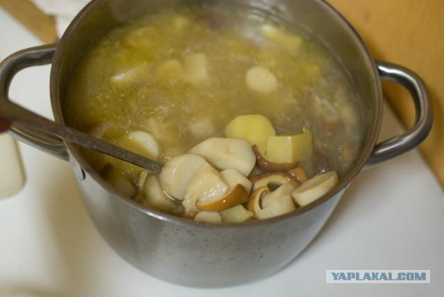 Грибной суп из опят с сыром рецепт пошагово