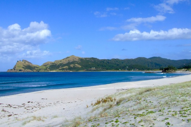 Great Barrier Island. Новая Зеландия.