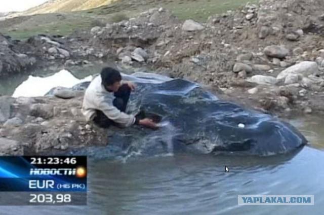 На Иссык-Куле нашли самородок нефрита весом около