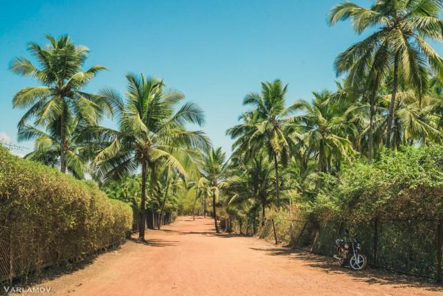 Путешествие в Южный Гоа