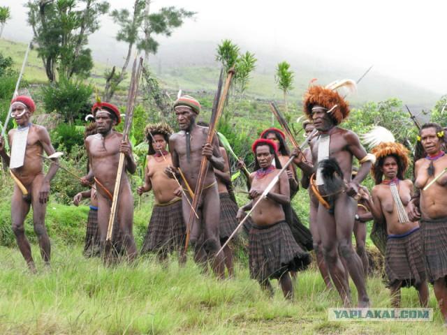 Путешествие в страну папуасов, людей и каннибалов