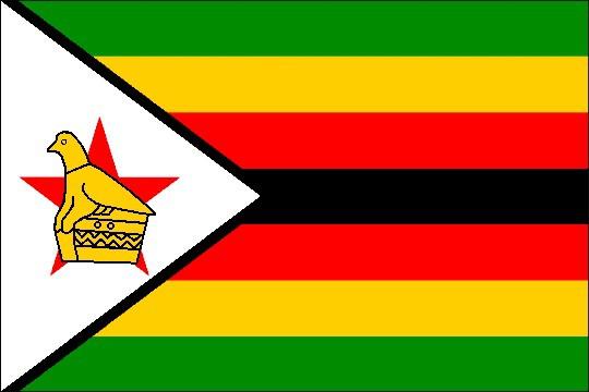 В Зимбабве олимпийцев, вернувшихся без медалей, посадили за решетку