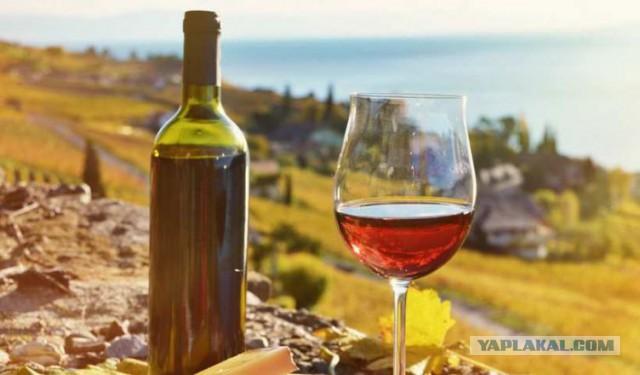 Роспотребнадзор заявил об ухудшении качества грузинского вина. Спустя три дня после запрета полетов в Грузию
