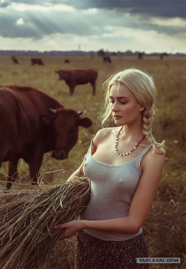 Почему я хочу уехать в деревню.