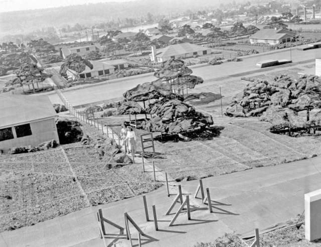 Во время Второй мировой США построило поддельный город на крыше завода, вот как он выглядел
