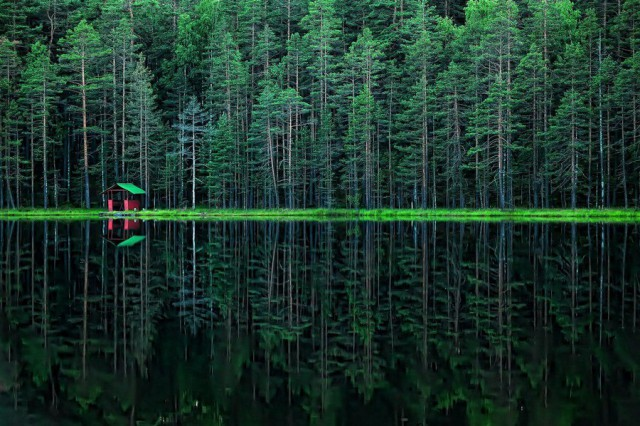 Необыкновенные и просто обыкновенные фото - Страница 17 12070503