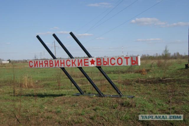 Синявинские высоты 1941-1944