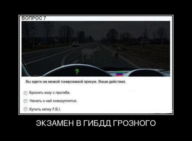 Симулятор коЗЫ