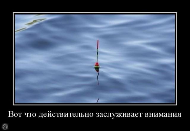 Фестивальный туризм в Крыму уже не популярен, сейчас там вырос спрос на шансон, - экс-министр АРК Лиев - Цензор.НЕТ 6239