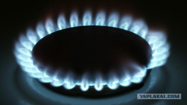 Федеральная антимонопольная служба предложила с 1 июля повысить цены на газ для россиян