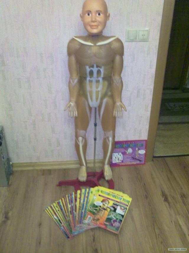 Продам скелет Артёмки в сборе!