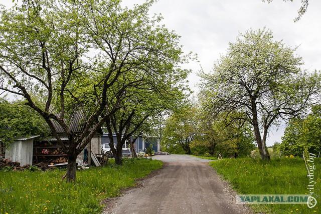 Как превратить загородный дом в дом мечты
