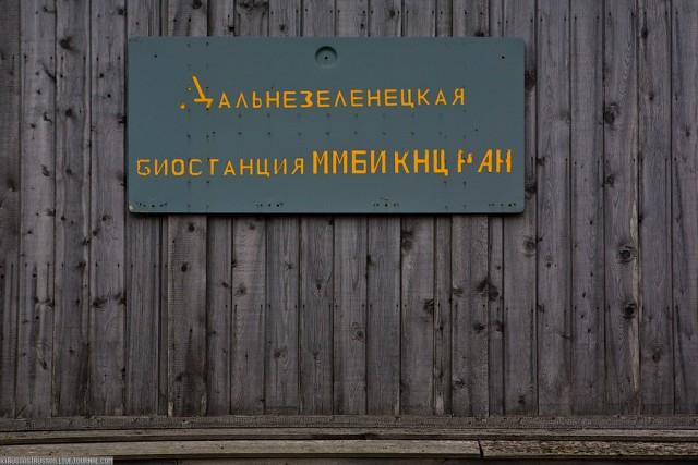 Самый северный институт