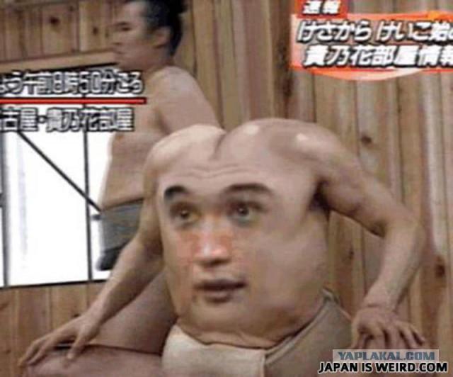 己の肛門に己の顔を突っ込んだ男の話 [無断転載禁止]©2ch.netYouTube動画>1本 ->画像>112枚