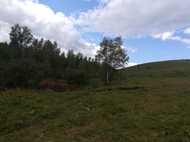Жители забайкальского села приговорили педофилов-гастарбайтеров к смерти и… привели приговор в исполнение