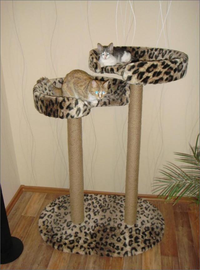 Как в домашних условиях сделать когтеточку для кошки фото