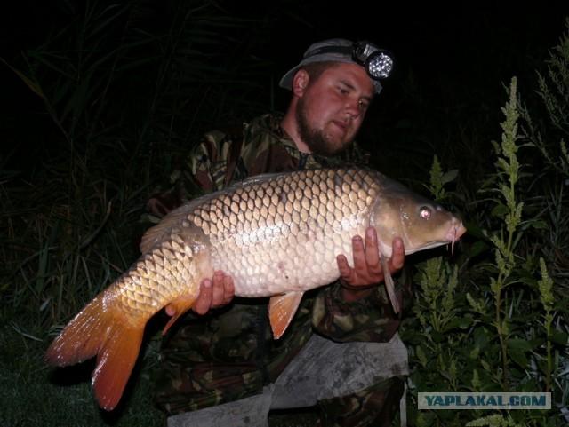 советы бывалых рыбалка на сазана