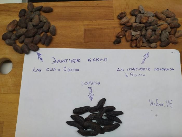То, что вы не знали о шоколаде - 2