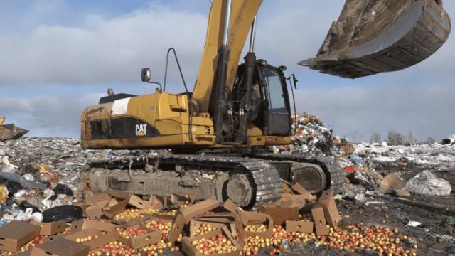 В Новосибирске провели спецоперацию по уничтожению 2 тонн вкусных, сочных, спелых яблок