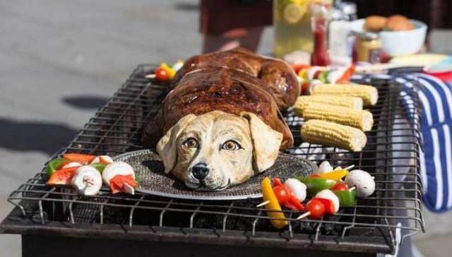 """В Лондоне зоозащитная организация публично """"зажарила собаку"""""""