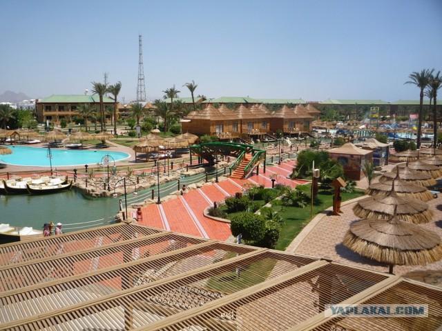 Как я съездил в Египет