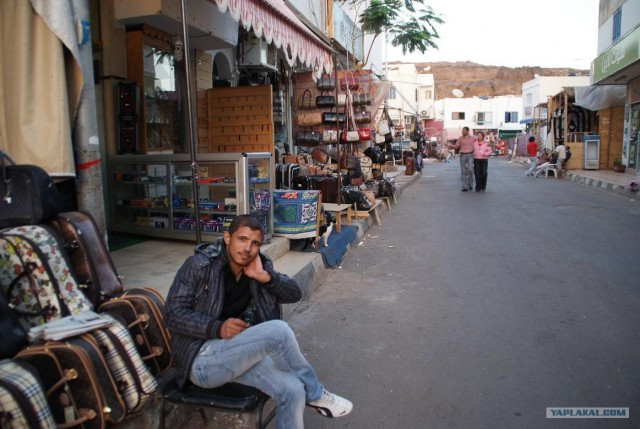 Поездка в Египет