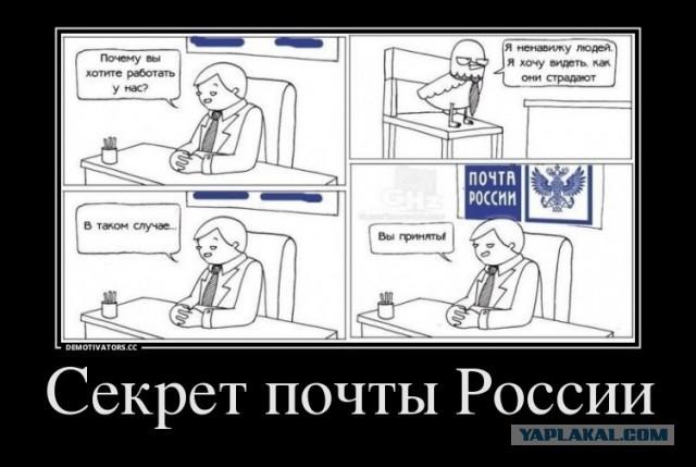 hd-porno-vkontakte