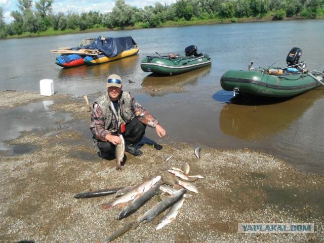 чулым сплав рыбалка