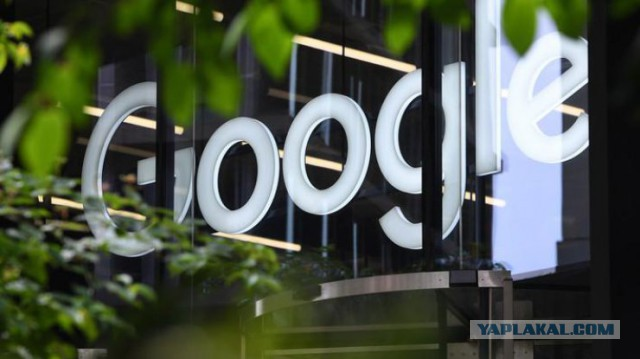 Сотрудники Google обвинили компанию в дискриминации белых мужчин