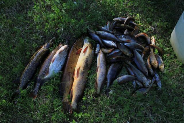 Где в краснодаре можно поехать на рыбалку