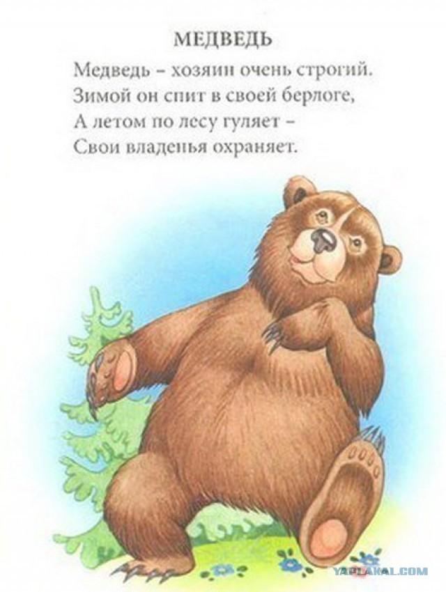 Стих про ребенка с медведем