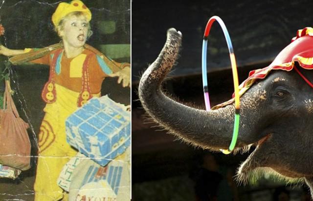 Жертвы цирка: 10 трагических случаев, которые произошли на арене