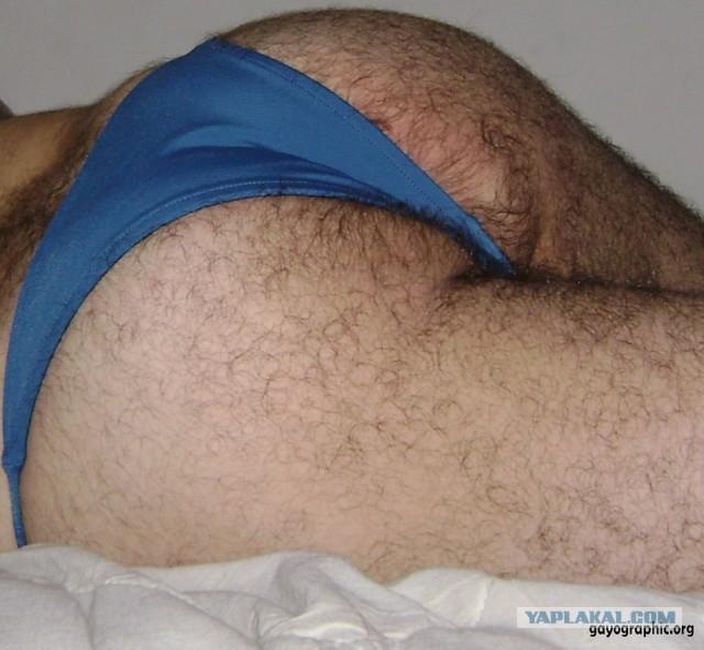 фото волосатая жопа