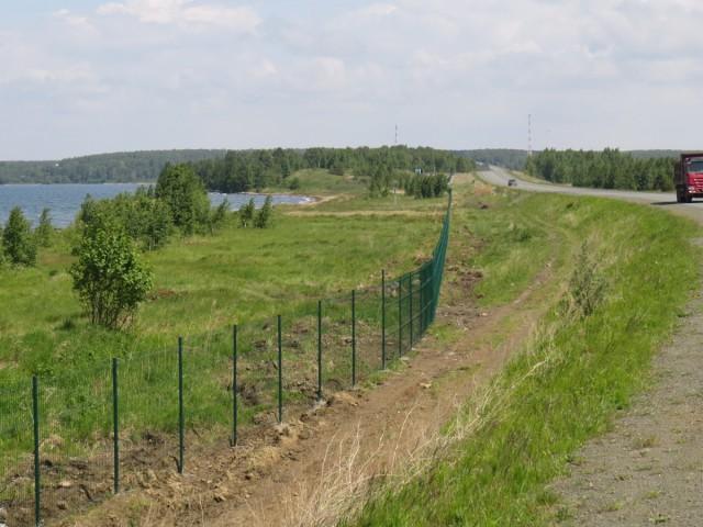 На озере Увильды в Челябинской области огородили забором последний свободный пляж.
