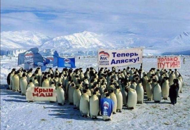Аляска и Гавайи просят ООН о самоопределении