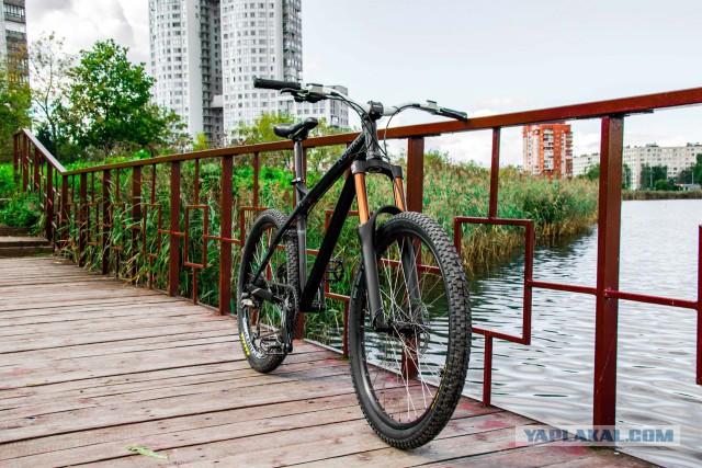 Велосипедная рама NS Bikes Eccentric Alu