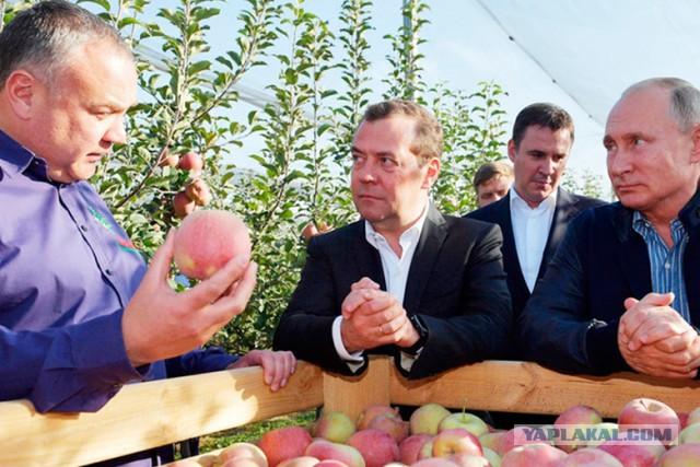 Прям из Библии фото: Криминальный авторитет искушает президента и премьера яблоком