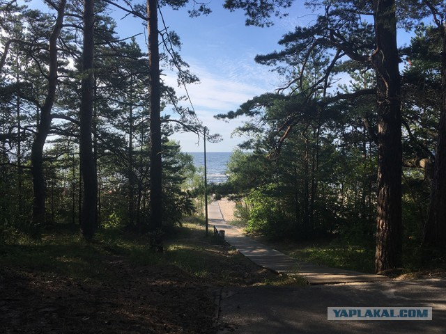 Эстония - Латвия - Литва в одной поездке