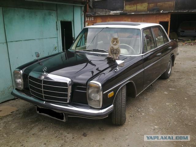 Билет в бизнес-класс 70-х: тест-драйв Mercedes-Benz W115