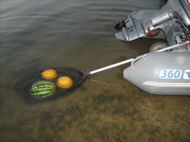 отдых в дельте волги рыбалка дикарем