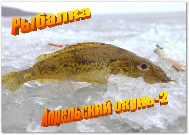 Рыбалка. Апрельский окунь-2.
