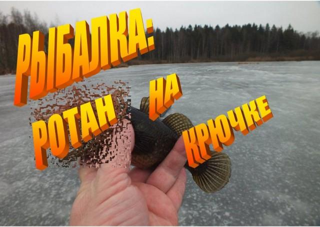 Рыбалка: ротан на крючке