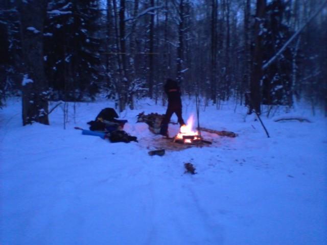Пару дней в зимнем лесу.