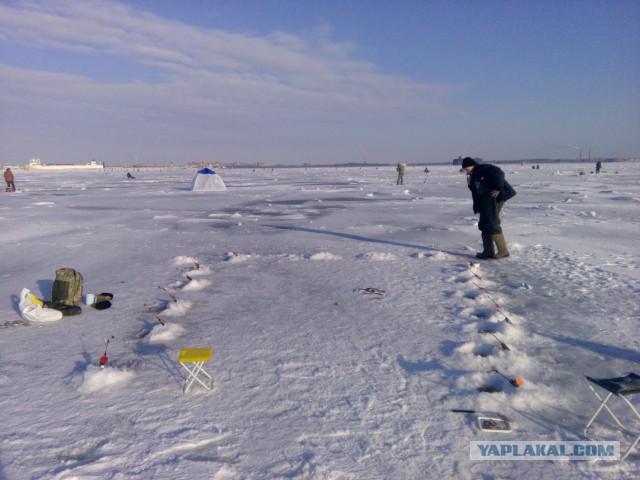 финский залив рыболовная