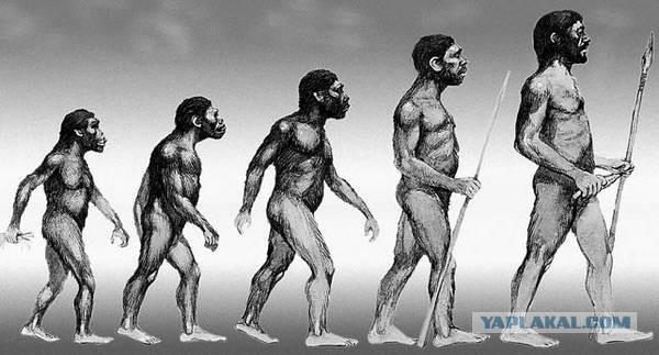 Родословная человечества