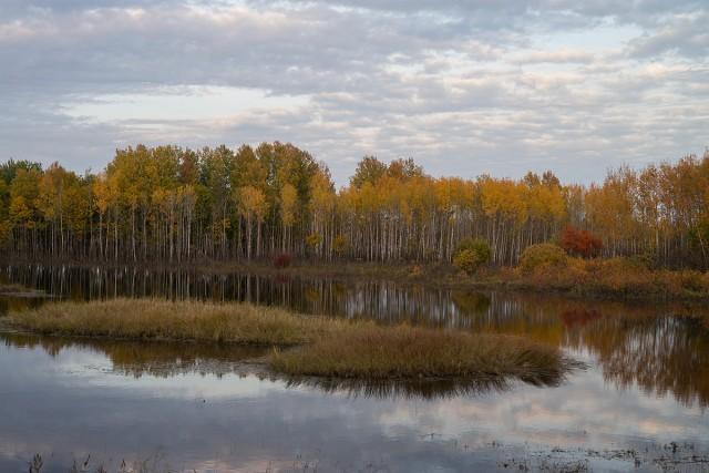 Одна из самых красивых дорог России